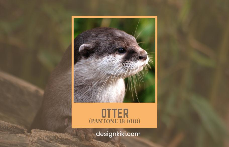 10 fall colors- otter