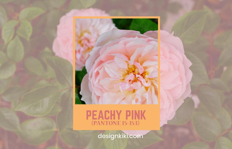 peachy pink- fall colors 2020