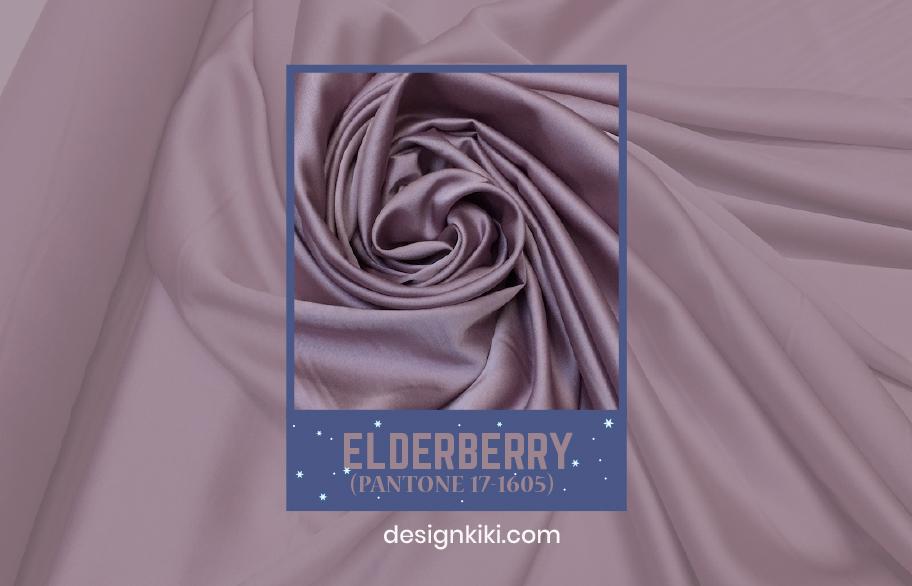 winter color- eldaeberry