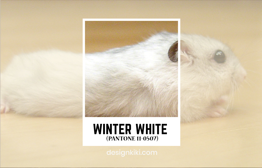 winter white-pantone