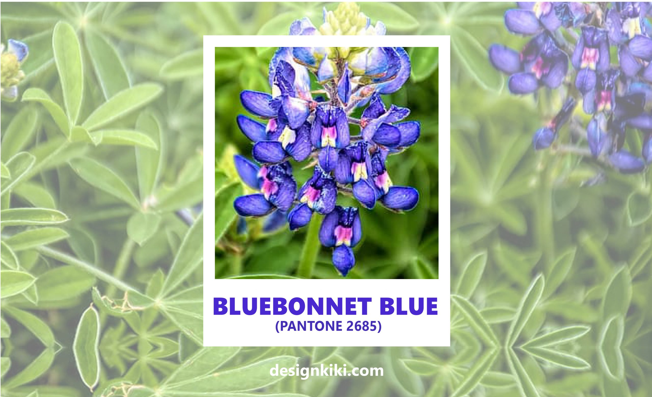 pantone blue shades
